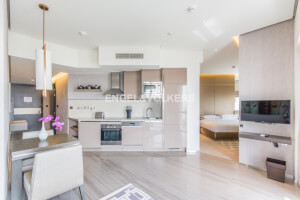 Property for Rent in Dubai Healthcare City