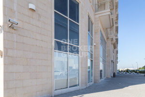 Property for Rent in Downtown Jebel Ali